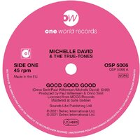 PRE-ORDER: Michelle David  & The True-tones - Good Good Good- One World Records - 21 May 2021 image