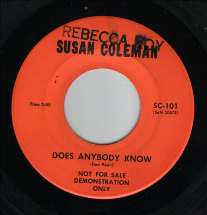 Susan Coleman - Does anybody know.jpg