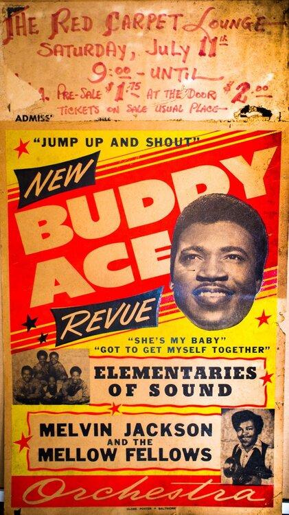 Buddy Ace.jpg