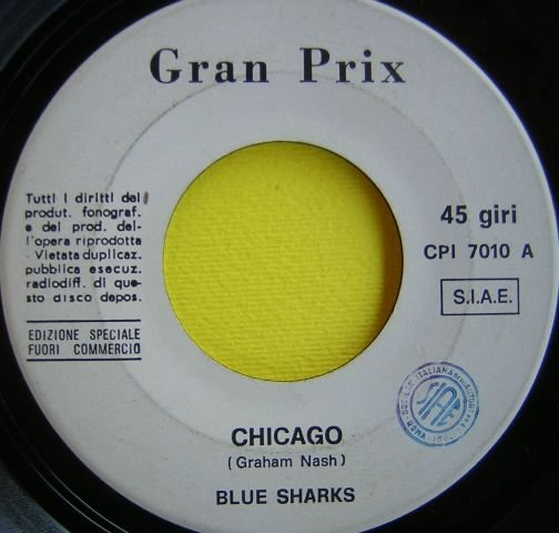 Blue Sharks.JPG
