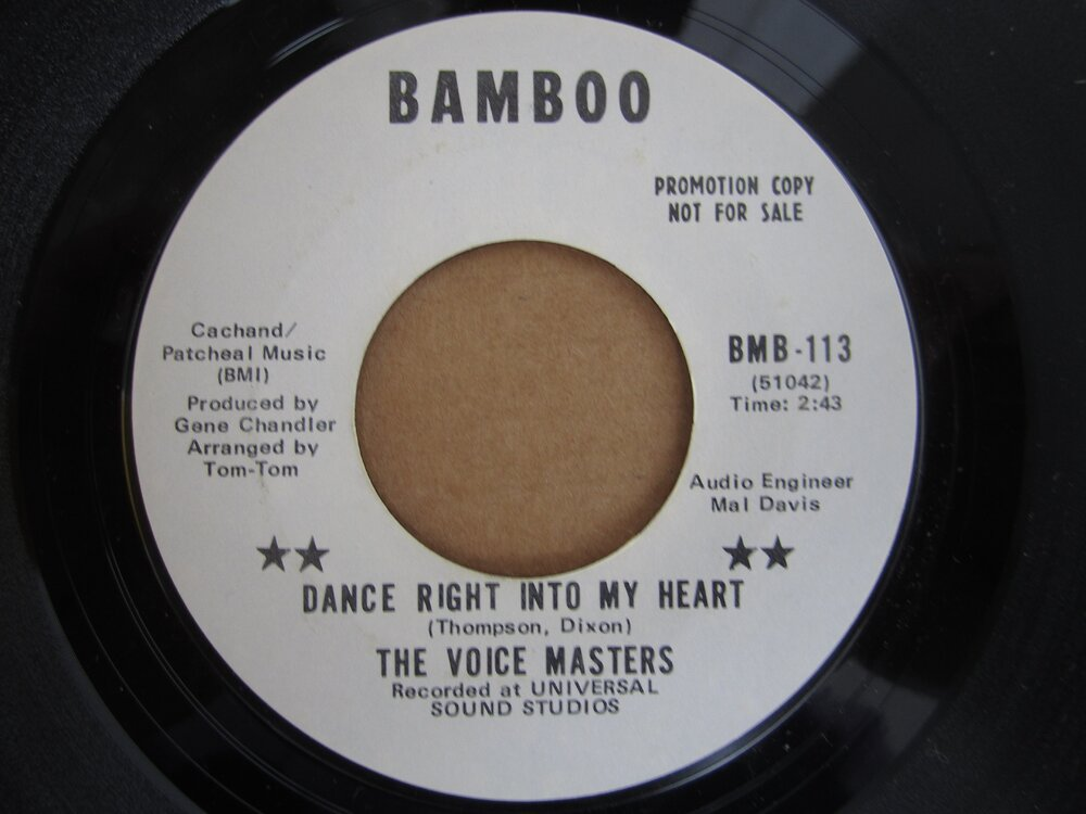 Voice Masters - dance right into my heart BAMBOO.JPG