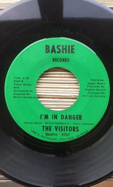 The Visitors (Bashie).jpg