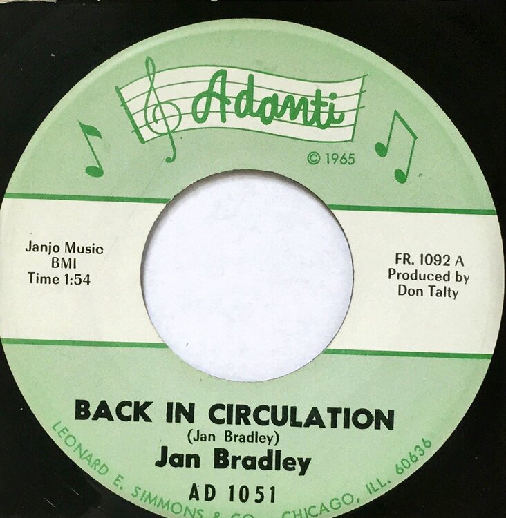 Bradley, Jan - Back In Circulation.jpeg