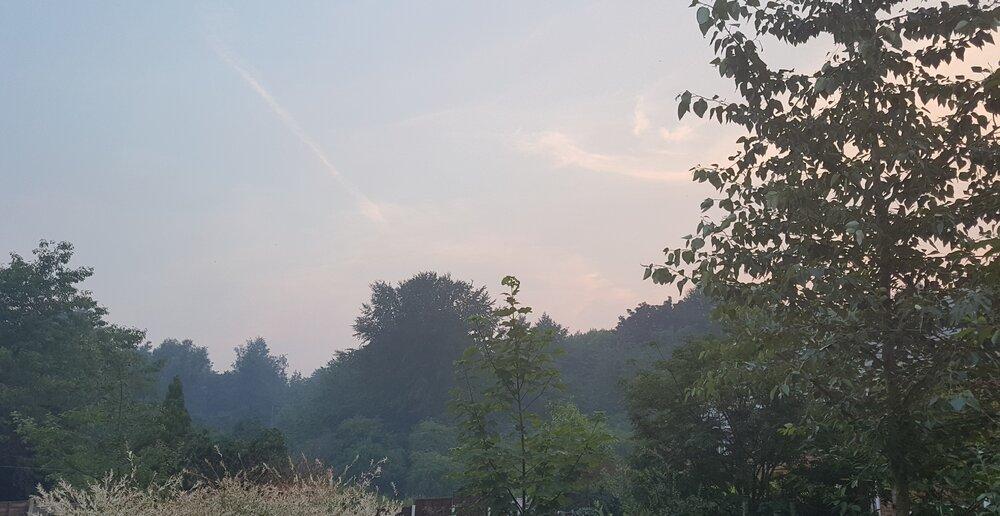 Back Garden smoke.jpg