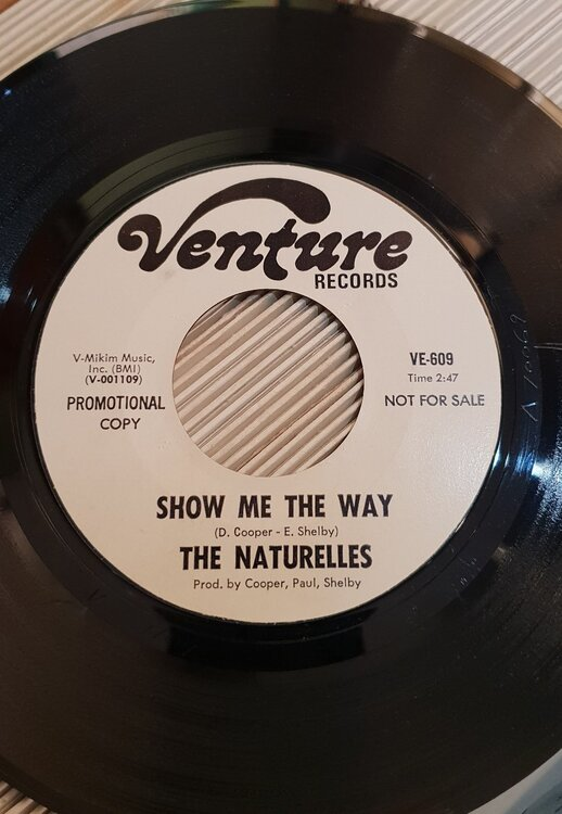 the naturelles - show.jpg