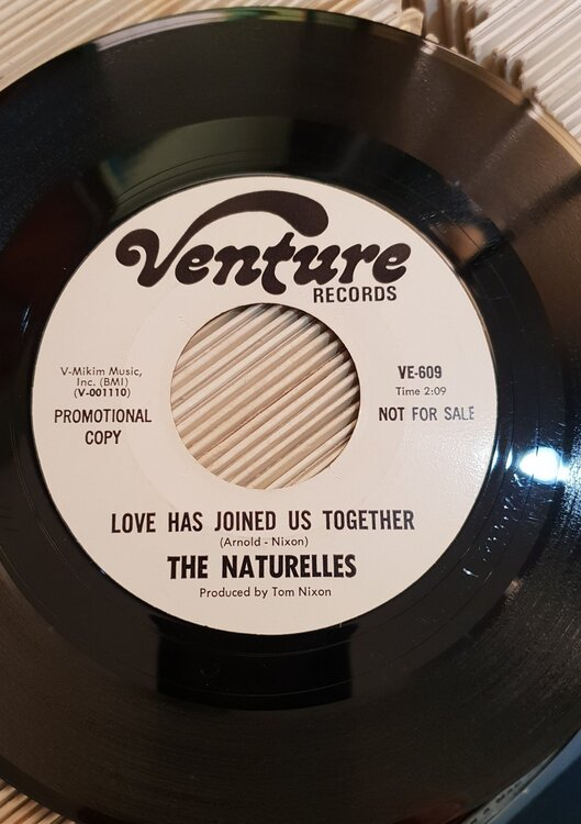 The Naturelles - love.jpg