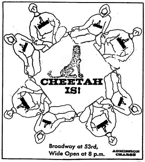 CheetahsNY67b.jpg