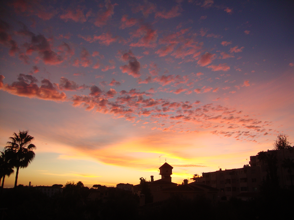 670364275_Rivierasunset.png.cd8ef3323b3447c5601f9d6c648a47fc.png