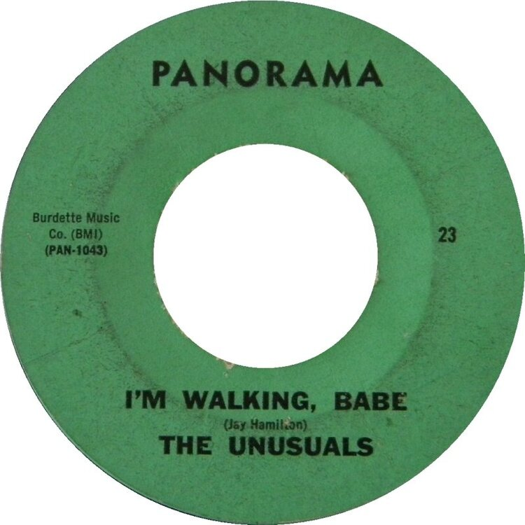 unusuals-im-walkin-babe-panorama-seattle.thumb.jpg.169b6480d28fbf1320b6cc352817db25.jpg