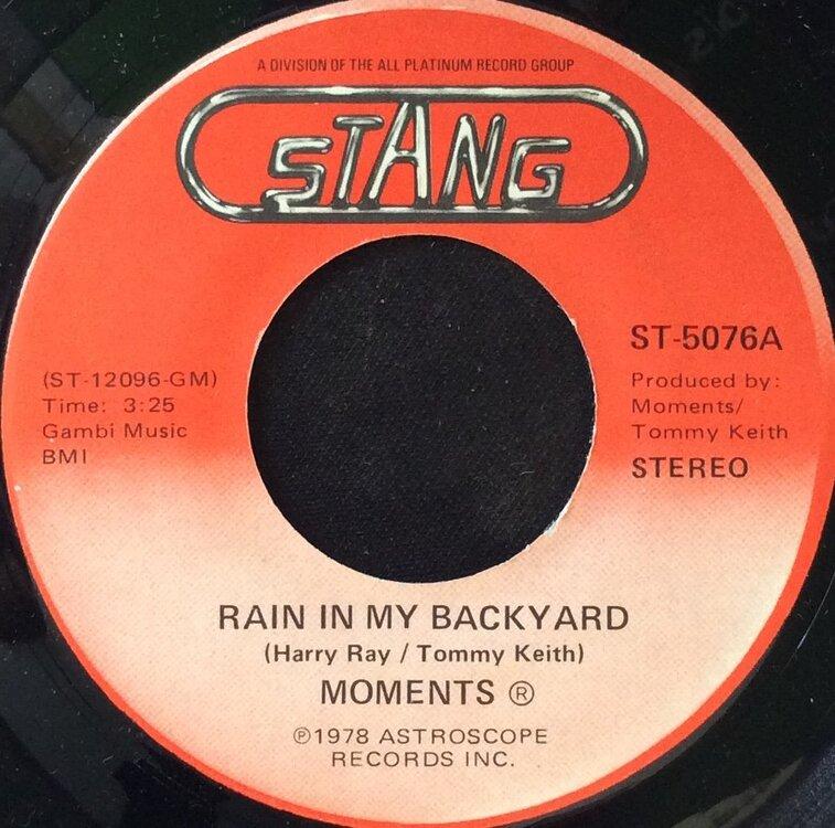 Rain In My Backyard M.jpg