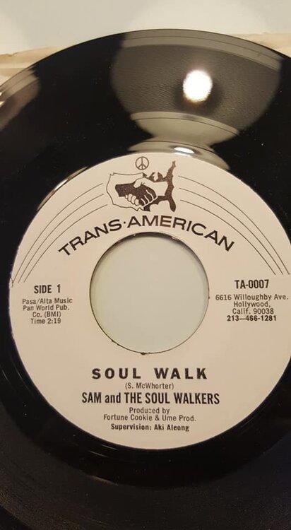 sam soul walkers.jpg