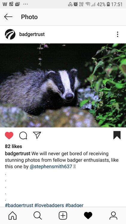 Screenshot_20190621-175120_Instagram.jpg
