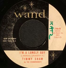 soul Im A Lonely Guy TS