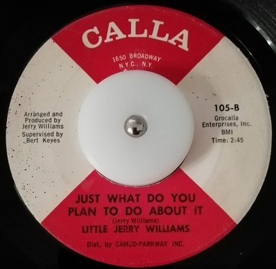 soul Little Jerry Williams   Just what do you plan