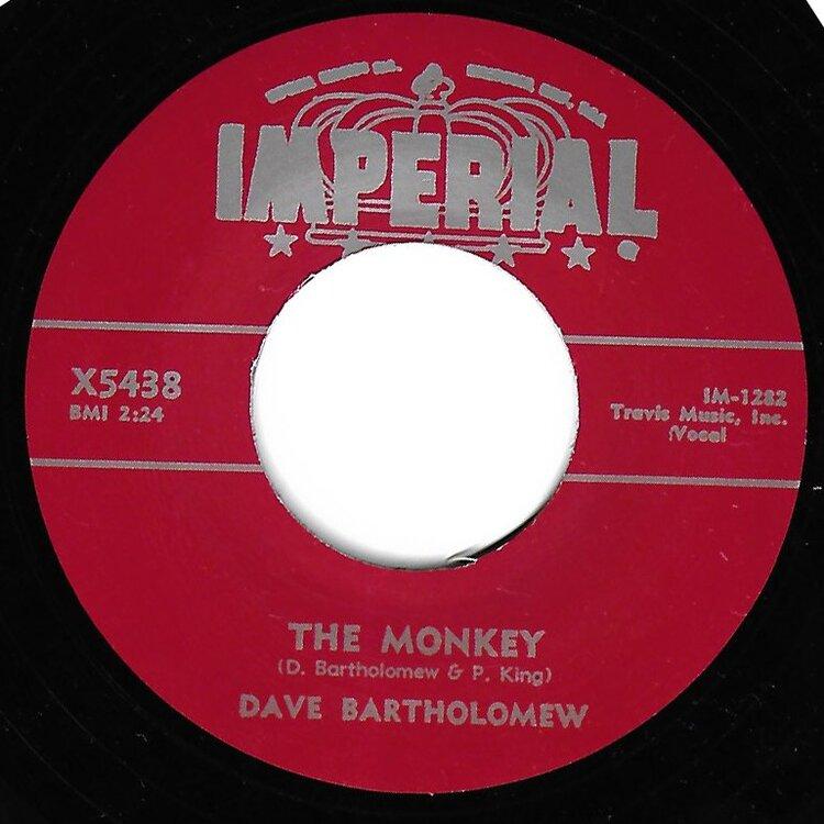 Monkey.thumb.jpg.9107c237ef31e63c74eee60801647644.jpg