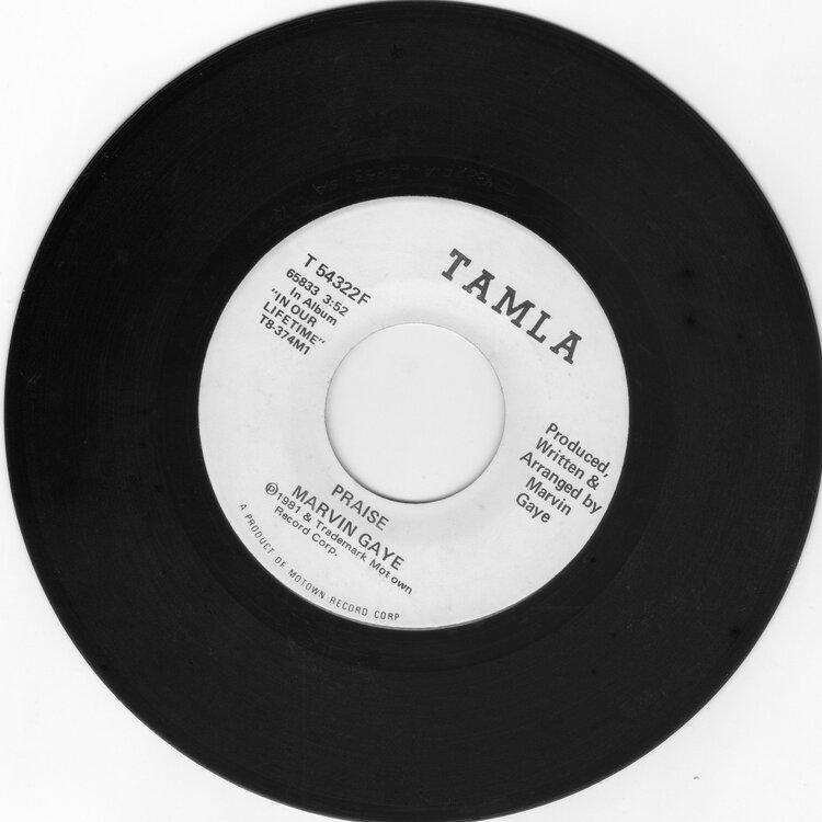 Marvin Gaye - Praise £10.jpg
