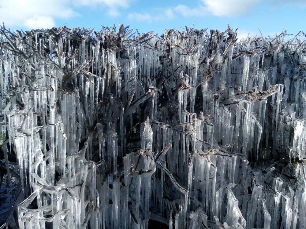 frost.thumb.jpg.07c813195a71de4eb0cea05dd72d9d10.jpg