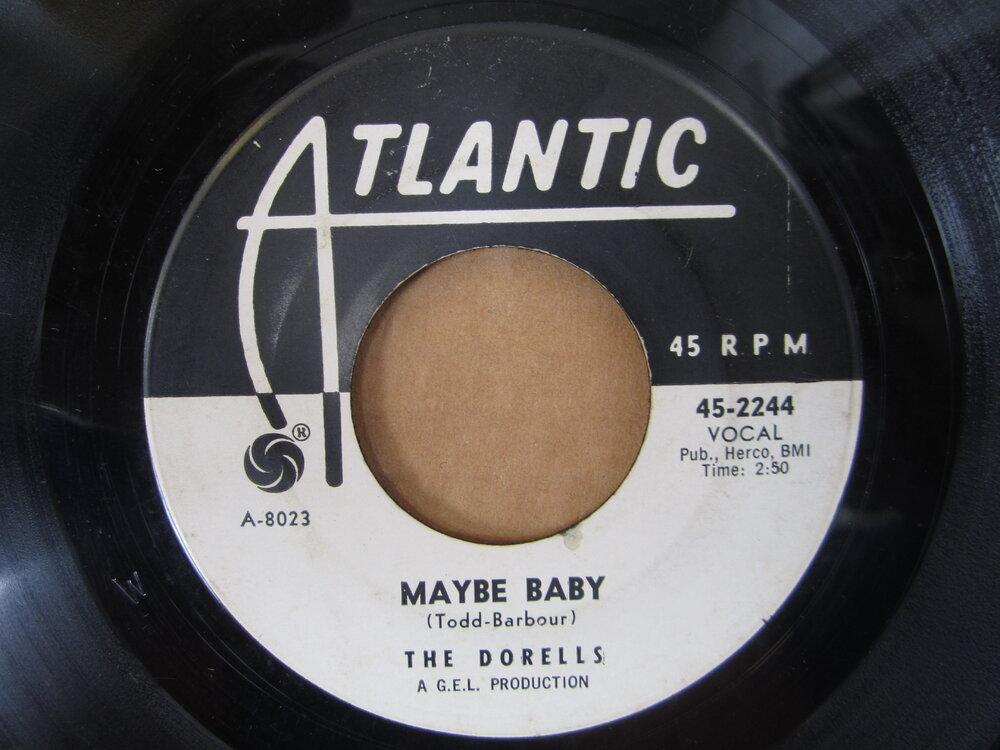 Dorells - maybe baby ATLANTIC.JPG