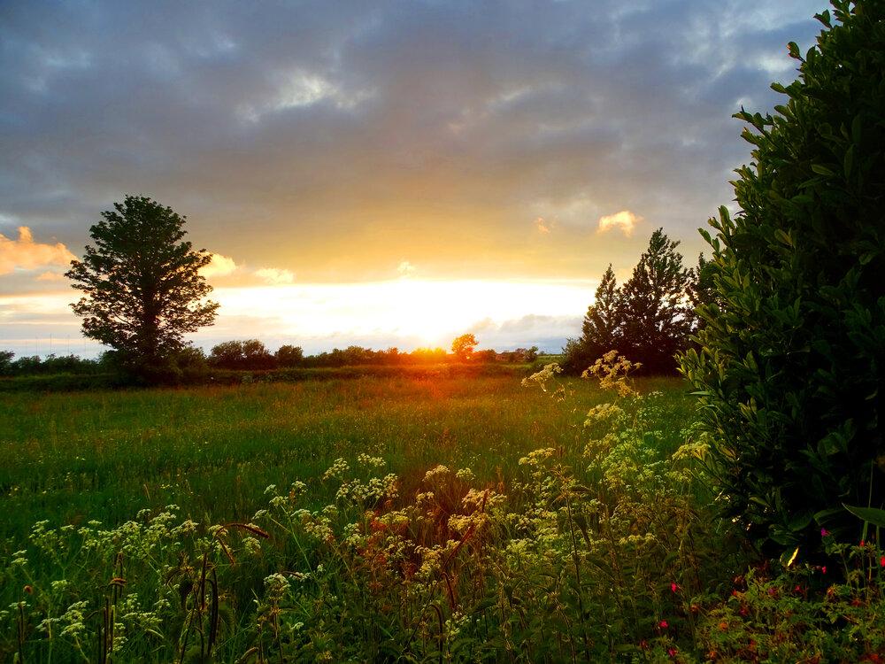 1990687583_Sunset5-06.thumb.jpg.7de13139686d97d601b6fc663e6134f8.jpg