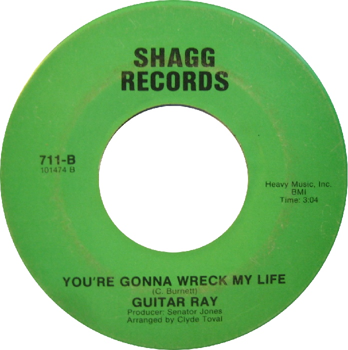 guitar-ray-youre-gonna-wreck-my-life-shagg.jpg